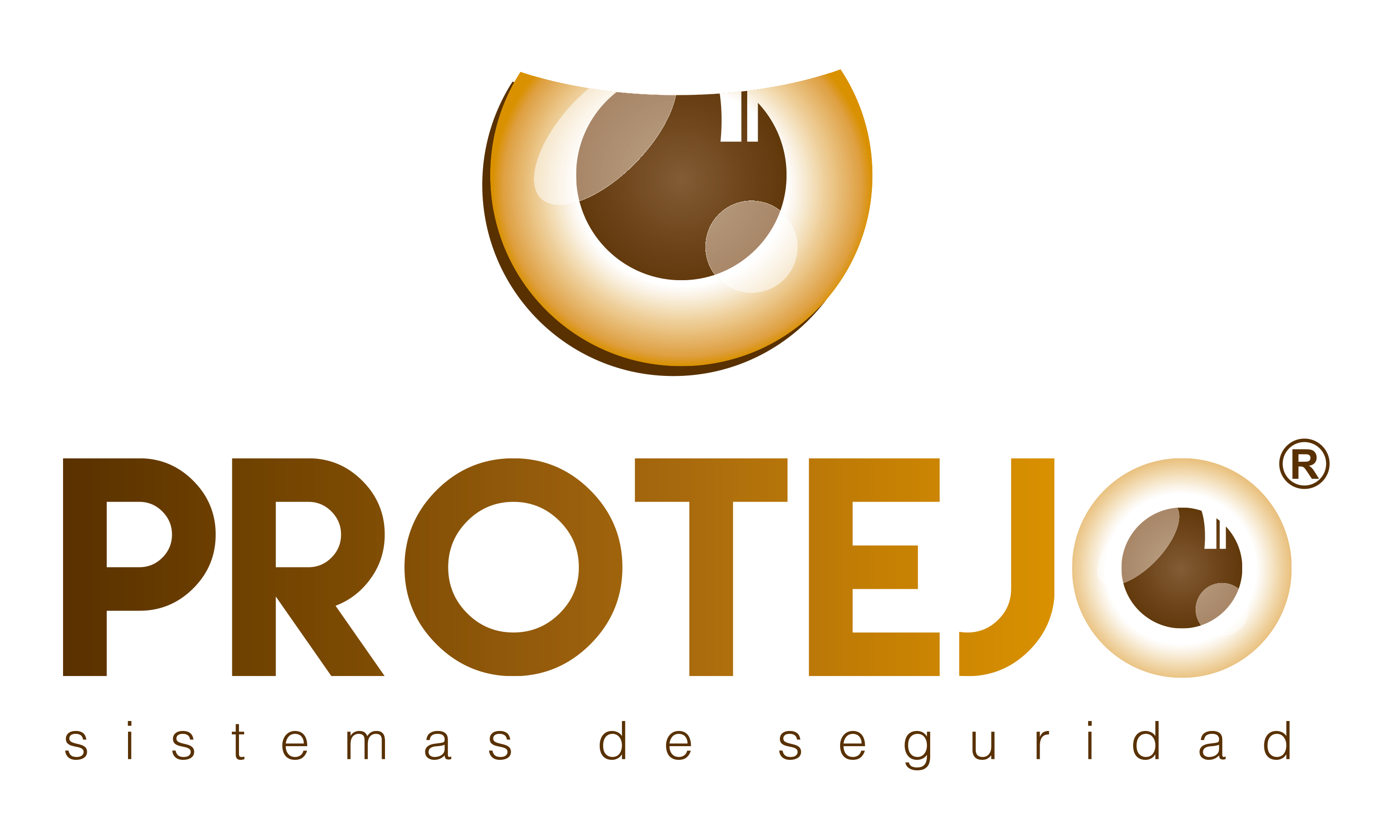 Protejo Sistemas de Seguridad®